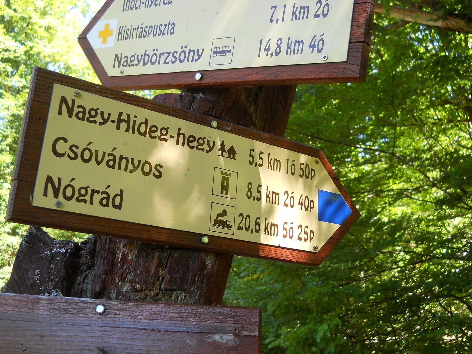 Hosszú, fárasztó kaptató kezdődik a Nagy-Hideg-hegyre: a 320 méter magasan fekvő kisinóci turistaháztól 850 méter magasra kell felkapaszkodni egy alig több mint öt kilométeres úton