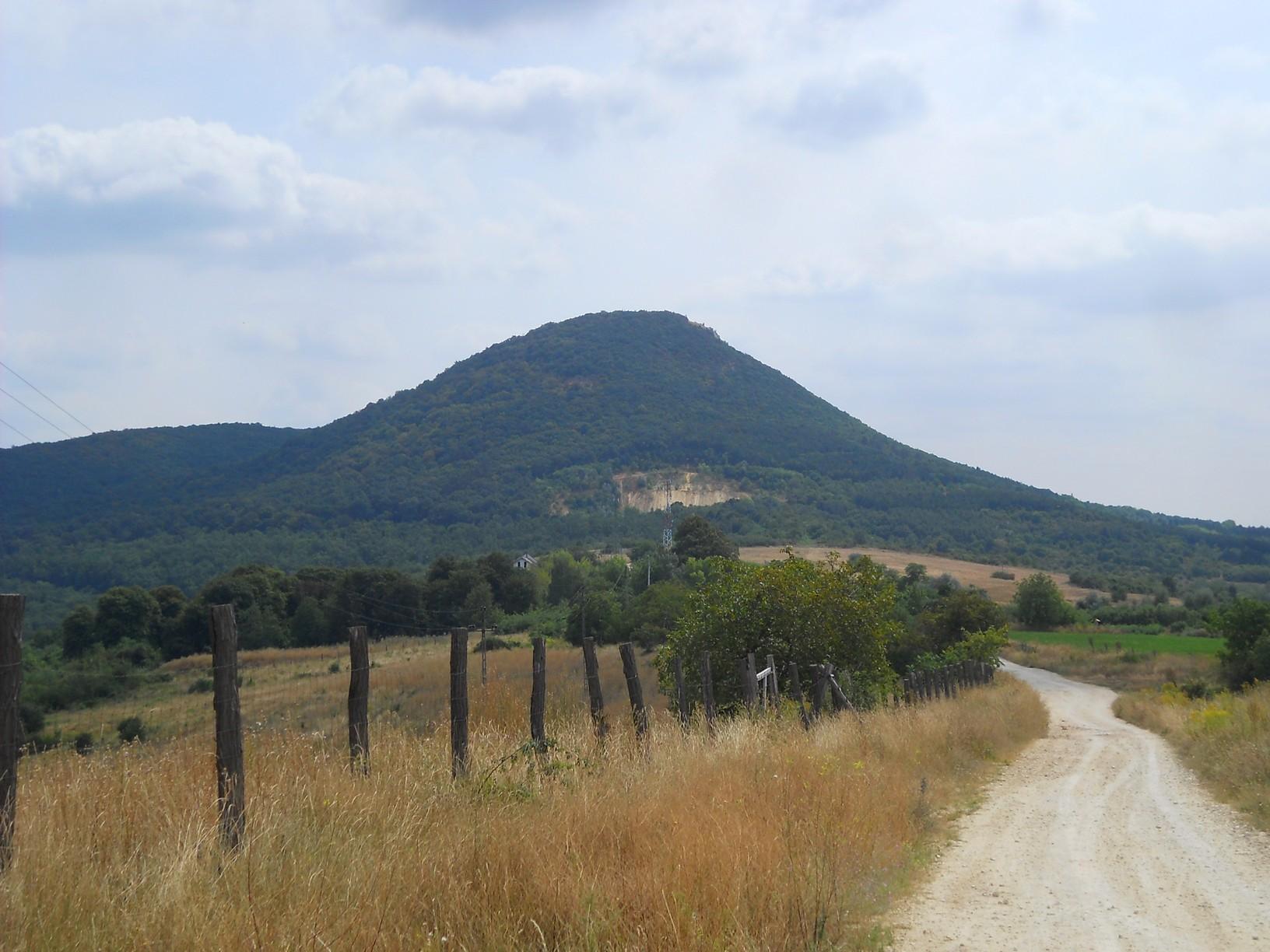 Az erdőhatárról már jól látható a 461 méter magas Kis-Kevély