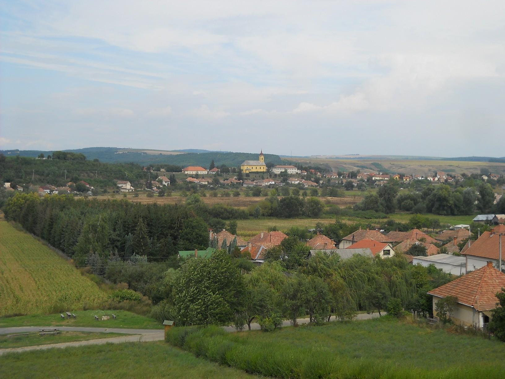 Kilátás Romhányra a Rákóczi-törökmogyorófától