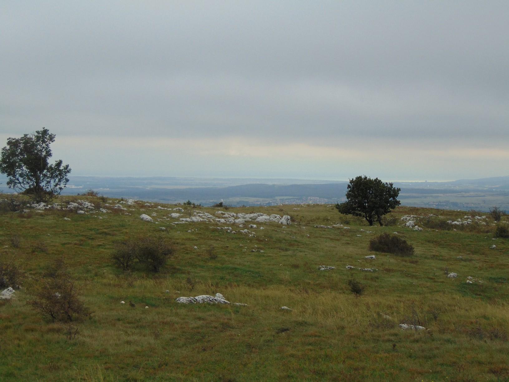 Kilátás Várpalota irányába a Fajdas-hegyről