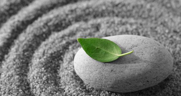 meditation-leaf.jpg
