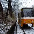 Kisebb fennakadásokat okozott a hó
