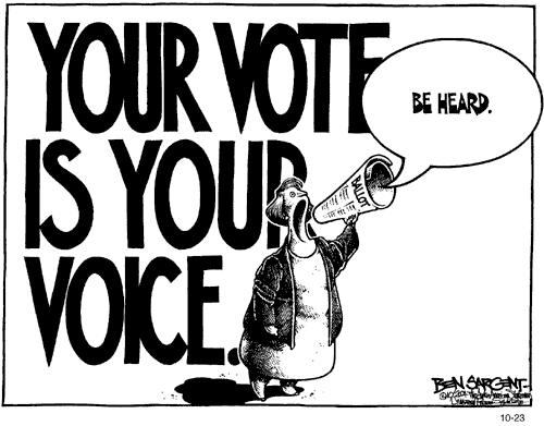 Your-vote-is-your-voice.jpg
