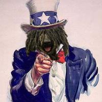 The Puli needs you!