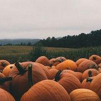 Felkészülés az őszre