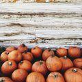 Sütőtök, az ősz sztárja