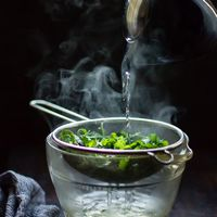 A zöld tea élettani hatása