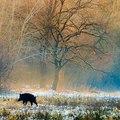 24 természeti szépség Magyarországon