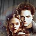 Puzzle Játék a Twilightból
