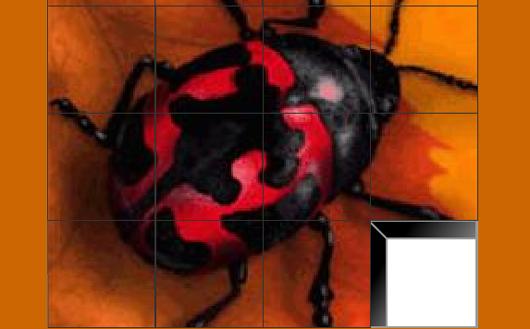 Bug Puzzle játék