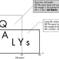 Miért pont QALYblog?