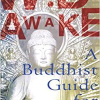 Wide Awake: A Buddhist Guide For Teens Diana Winston
