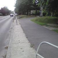 A Fóti úti Bicikliút karbantartását, biztonságosabbá tételét kezdeményeztem.