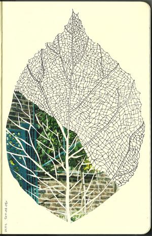 20100211-leaf-small.jpeg