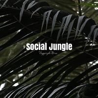 A marketinges is ember-Social Jungle