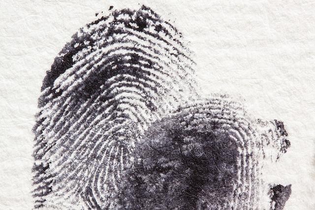 fingerprint-255904_640.jpg