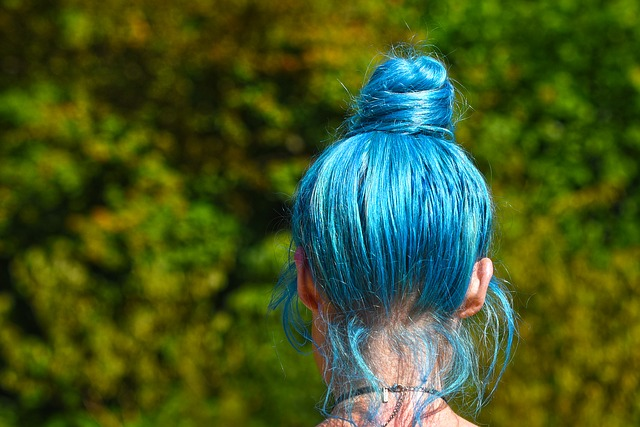 blue-hair-3503011_640.jpg