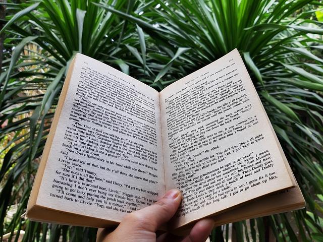 book-4122088_640.jpg