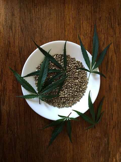 hemp-seeds-1418322_640.jpg