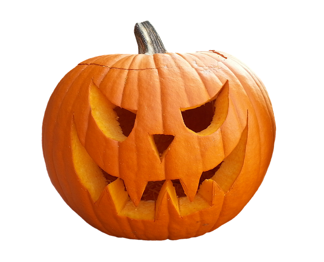 pumpkin-2805140_640.png