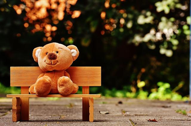 teddy-1640660_640.jpg