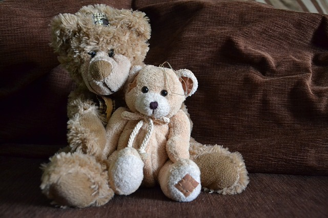 teddy-bear-360306_640.jpg
