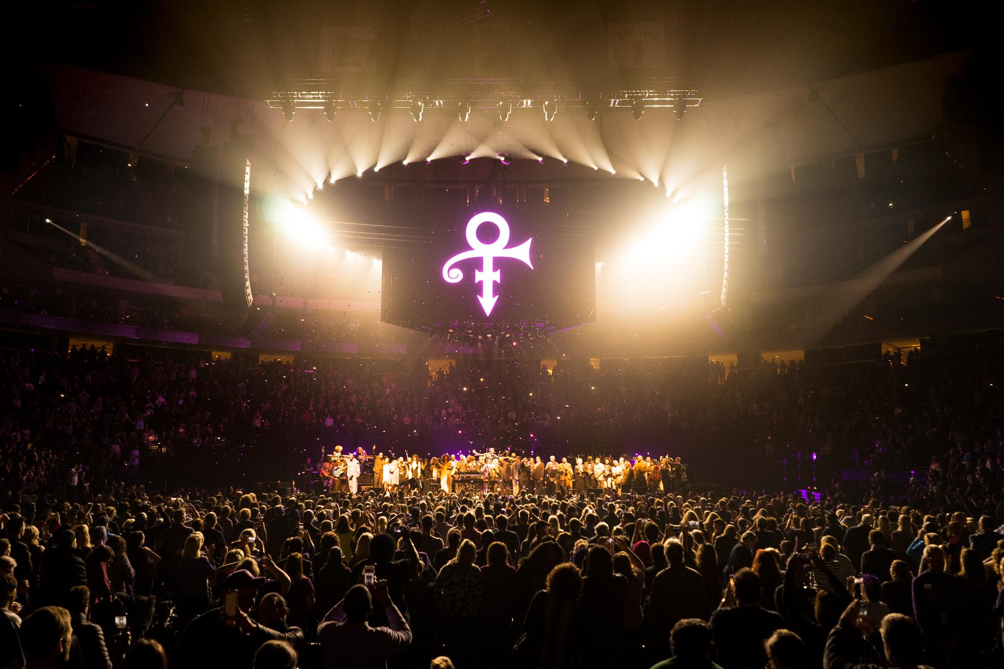 prince-tribute-darin-kamnetz-004.jpg