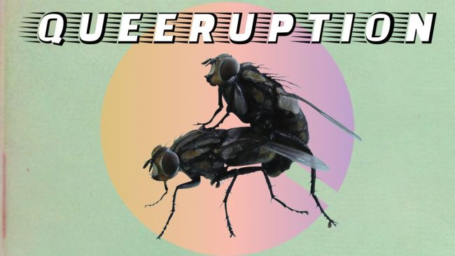 queeruption_event_cover.jpg