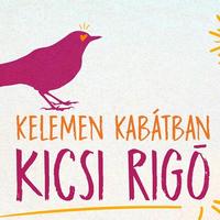 Kicsi Rigó: Kelemen Kabátban-remixverseny, vasárnap a határidő