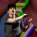 A Red Hot Chili Peppers közelről - fotók a budapesti koncertről