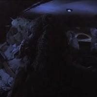 Ty Segallt szörnyek lövik szitává új klipjében