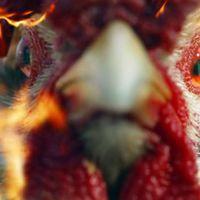 Csirkezilla bosszút áll az emberiségen a Shoes új klipjében