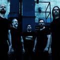 Ma este Meshuggah a Barba Negra Trackben!