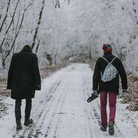 Magyarradar + premier – Pixel Cranes: Diamond Shore EP