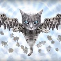 Macskák rossz LSD tripen  - itt az új Meow The Jewels-klip