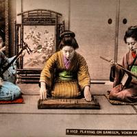 Kedveskedve vaddisznóhoz hasonlítják őket - Japán, Korea és Indonézia népzenéje