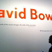 David Bowie száz kedvenc könyve