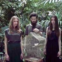 Klippremier! Minimyst feat. Manoya: Birdhouse