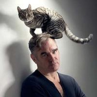 Új Morrissey-dalok a rádióból