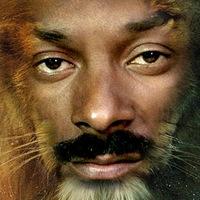 Snoop Lion a lányát is szerepelteti a Bob Marley lelkében és gandzsafüstben érlelt albumán