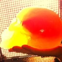 Flaming Lips-dalok ehető agyvelőbe ágyazva