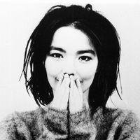 Ezerszínű homogenitás – Björk nagylemezei (1993-2015)