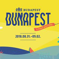 Duna-parti zeneparti – Soia, CC:DISCO! és Zuboly a hétvégi Dunapest Fesztiválon