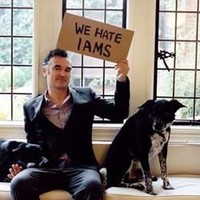 Morrissey-t megharapta egy kutya