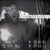 A hét vírusvideója: a Bohemian Rhapsody egy rendőrautó hátsó ülésén