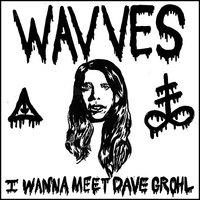 Wavves: I Wanna Meet Dave Grohl (mp3) + LiquidSwords (tévéfellépés GZA-val)