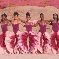 18+ Máris ikonikus a Janelle Monáe-klipben szereplő vaginanadrág