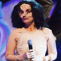 Björk egy izlandi sulibuliban pörgette a lemezeket