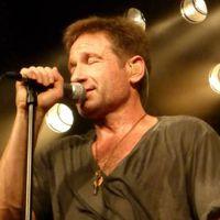 Jövőre Budapesten koncertezik David Duchovny