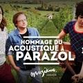 A Recorder bemutatja: újra Hommage du acoustique á Parazol a Muzikumban